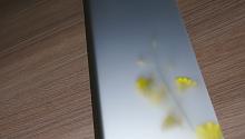 ウッディーライン印刷焼付け熱処理ガラスの画像